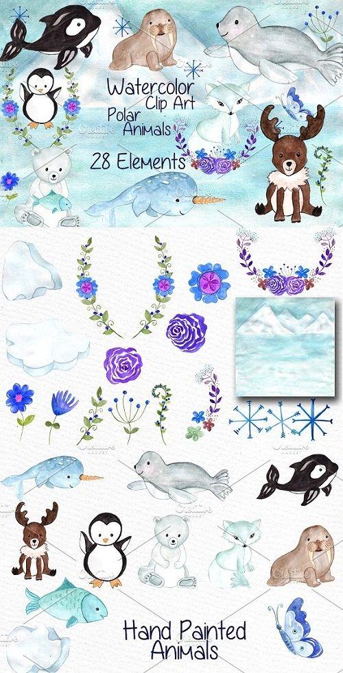 Watercolor polar animals clipart - 638500