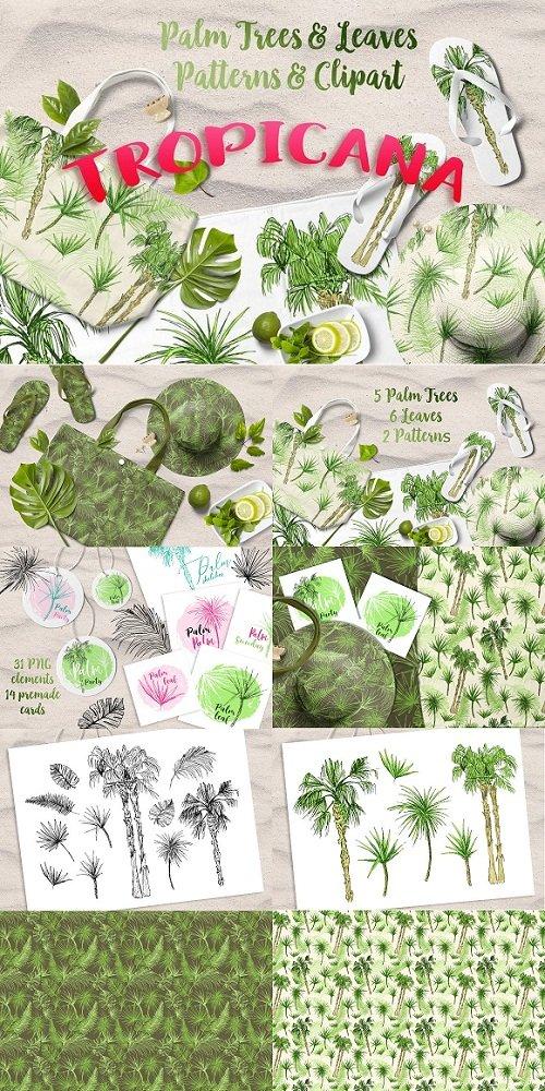 Tropicana - Palm Trees & Leaves Set - 2752366