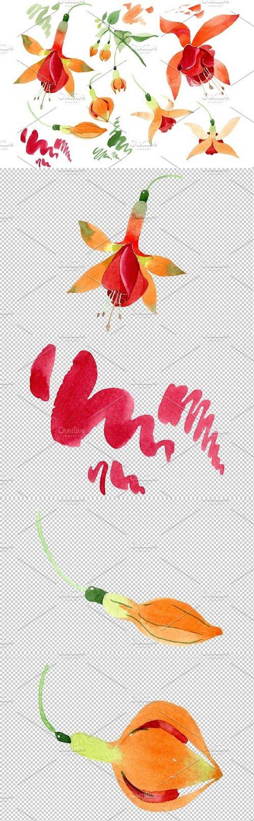 Orange Fuchsia Watercolor png - 3508030
