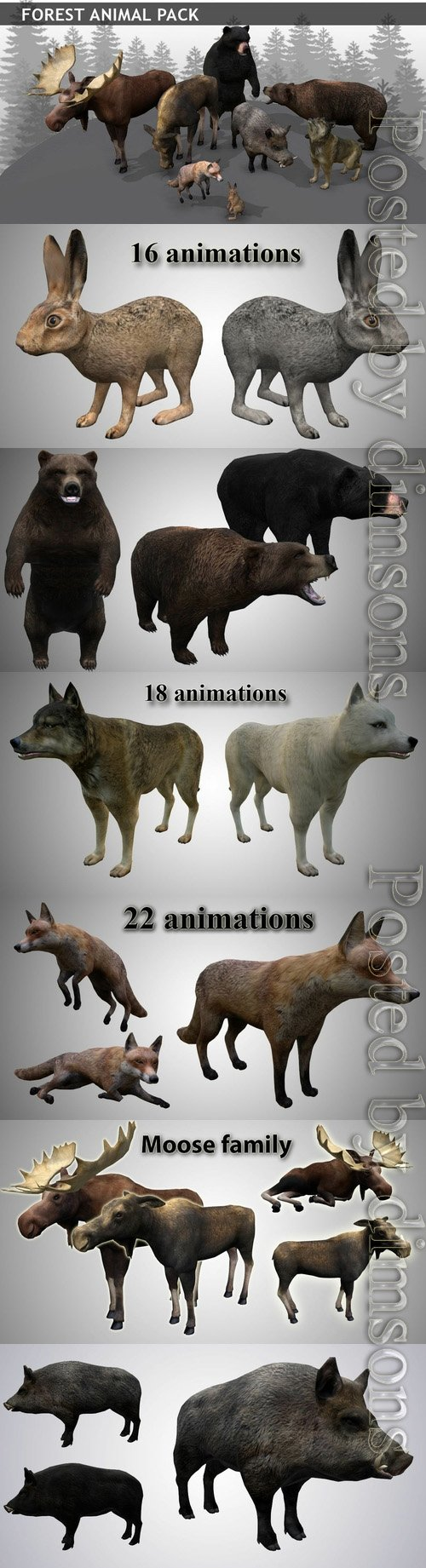 Forest animals pack Low-poly 3D model