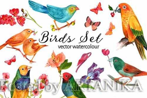 CreativeMarket - Vector Watercolour Birds Set 2312226