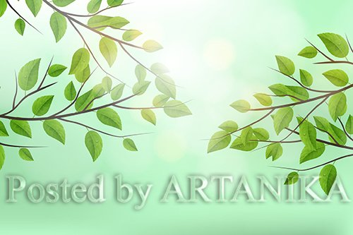 Realistic Vector Tree Branch Background