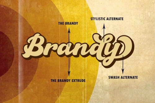 CreativeMarket - The Brandy Bold Retro Script 3570435