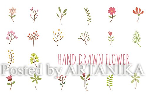 Flower Hand Drawn