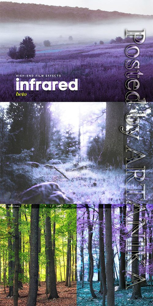 Infrared Action 19684148