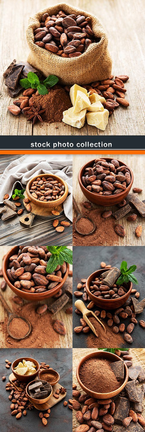 Cocoa beans and fragrant bitter chocolate tasty dessert