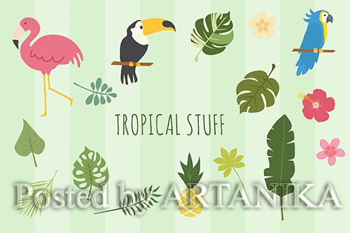 Tropical Hand Drawn