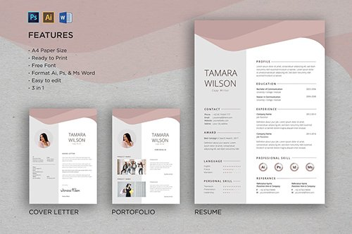 Professional CV And Resume Template Tamara