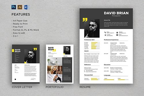 Professional CV And Resume Template David
