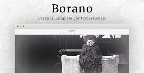 ThemeForest - Borano v1.46 - Photography / Portfolio WordPress Theme (Update: 19 March 19) - 17170617