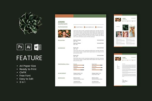 Professional CV And Resume Template Andre