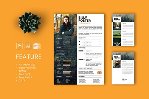 Professional CV And Resume Template Billy