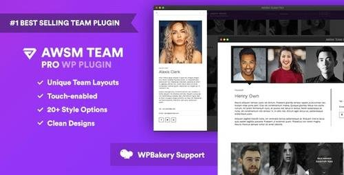 CodeCanyon - The Team Pro v1.3.1 - Team Showcase WordPress Plugin - 17521235