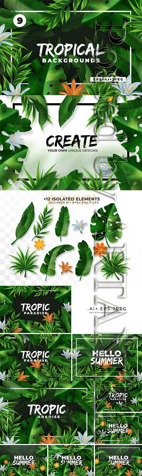 Vector Tropical Elements & Backgrounds Collection