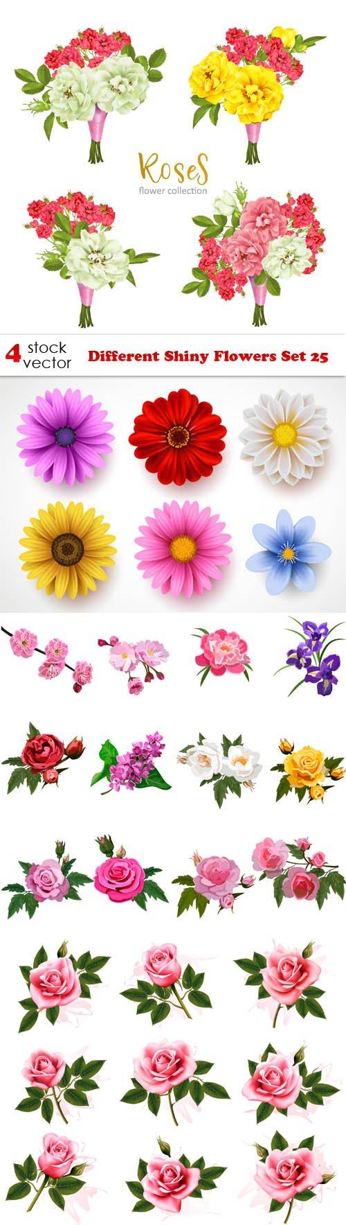 Vectors - Different Shiny Flowers Set 25