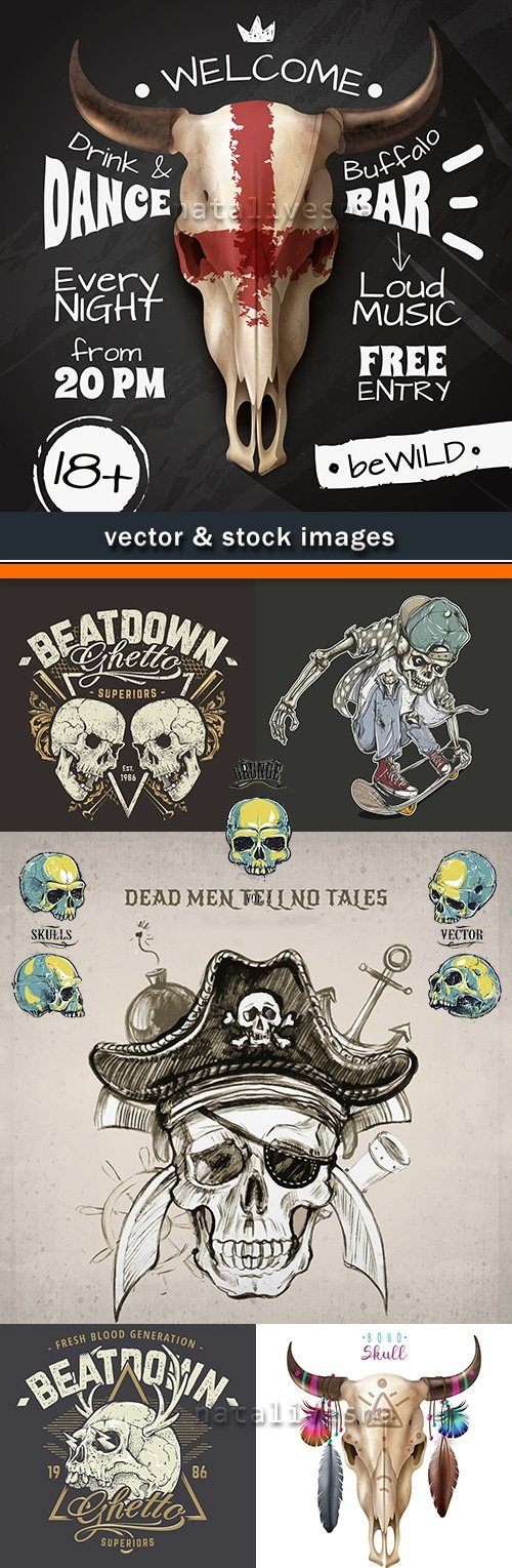 Vintage skull with decor elements an illustration vector