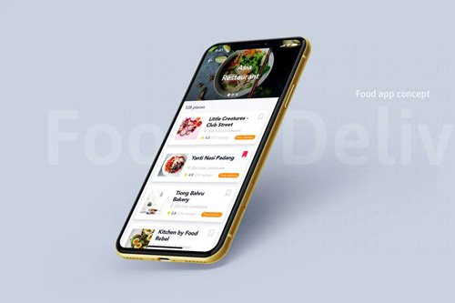 Food Delivery app concept - VG32BF4