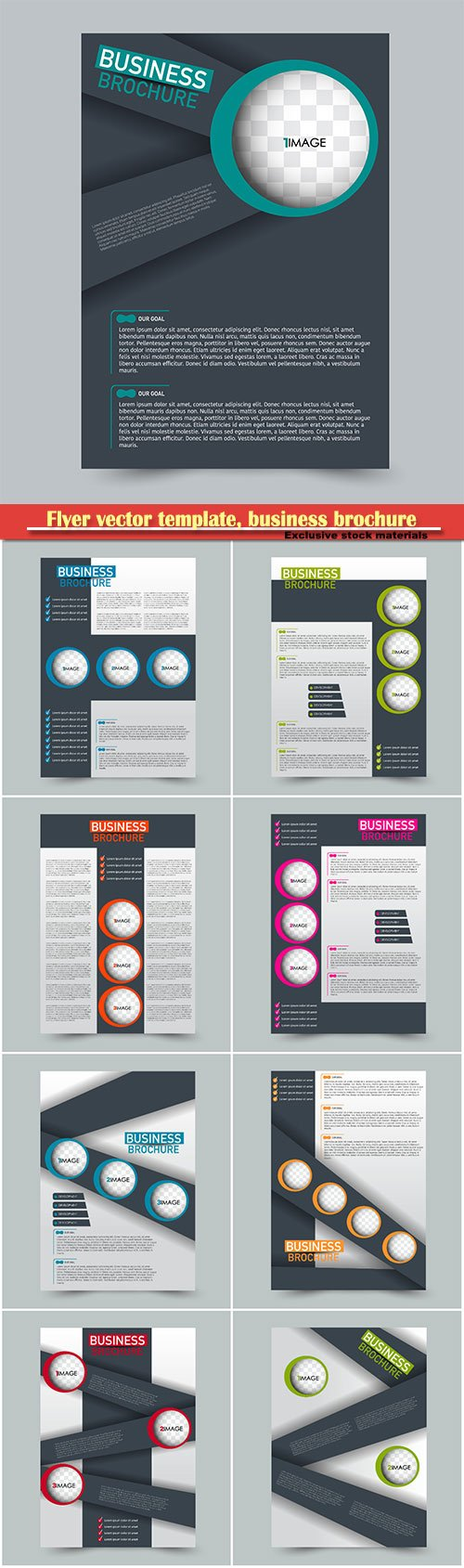 Flyer vector template, business brochure, magazine cover # 13