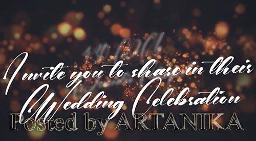 Wedding Invitation 223044