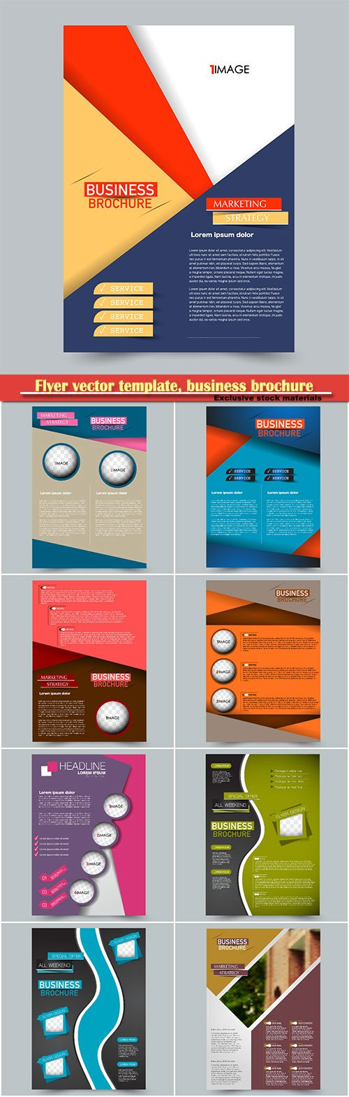 Flyer vector template, business brochure, magazine cover # 36