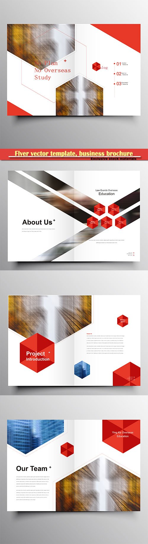 Flyer vector template, business brochure, magazine cover # 34