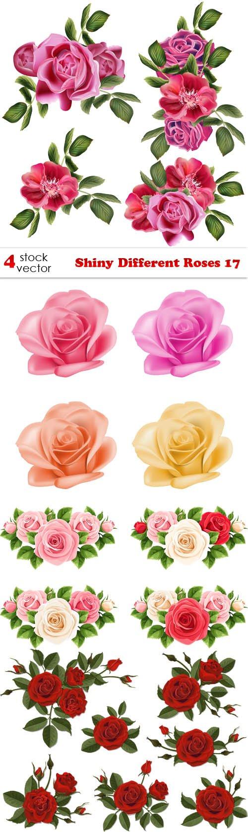 Vectors - Shiny Different Roses 17
