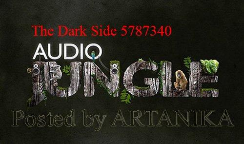 The Dark Side 5787340