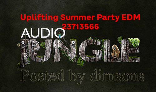Uplifting Summer Party EDM 23713566