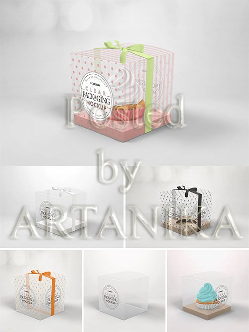 Clear Cupcake Box Packaging Mockup