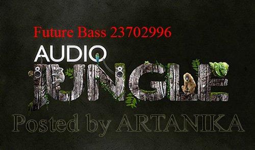 Future Bass 23702996