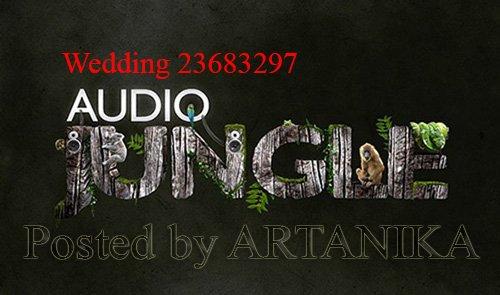Wedding 23683297