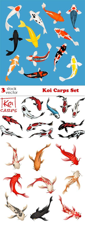 Vectors - Koi Carps Set