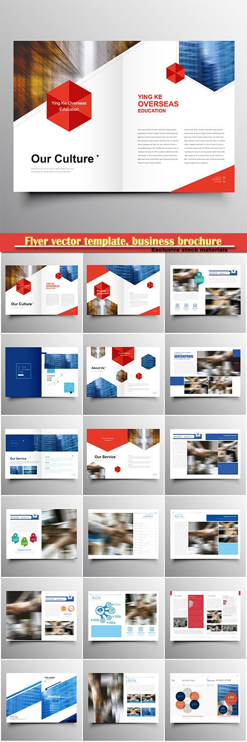 Flyer vector template, business brochure, magazine cover # 43