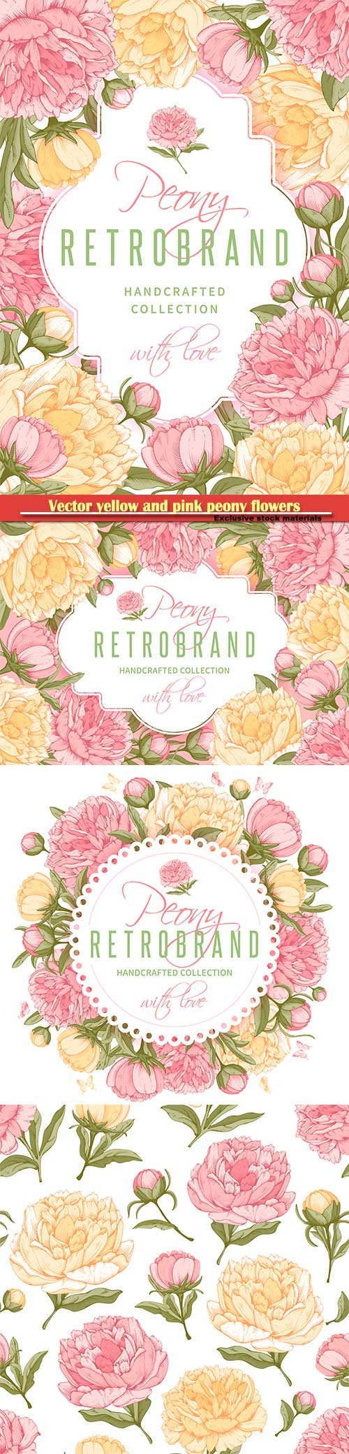 Vector frame with yellow and pink peony flowers
