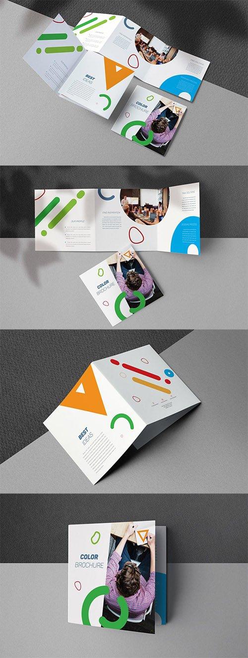 Color Brochure INDD