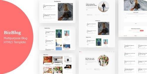 ThemeForest - Bizblog v1.0 - Multipurpose Personal Blog HTML5 Template - 23815623