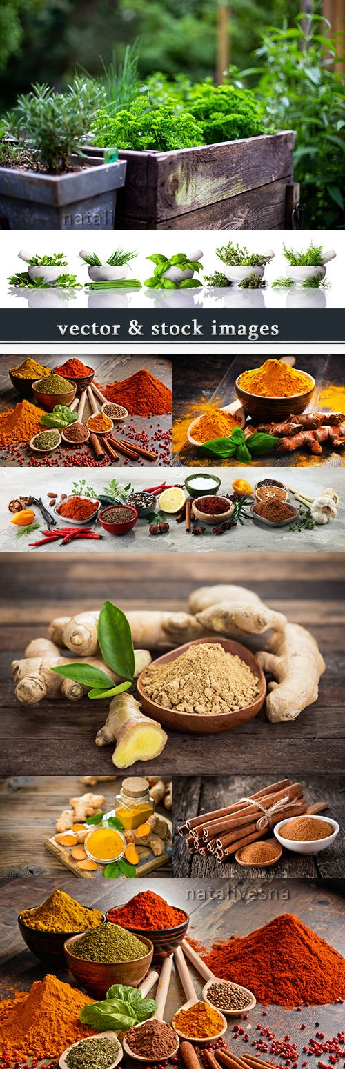 Fragrant spices ginger turmeric and fresh greens