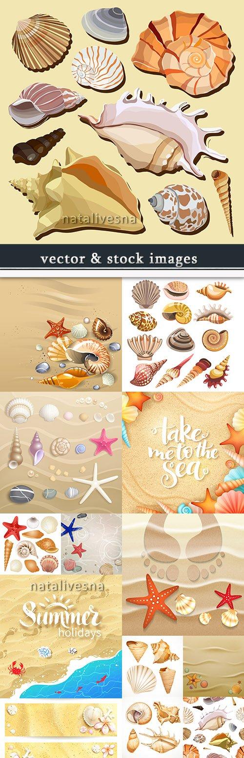 Summer seashells and stars on the sandy beach