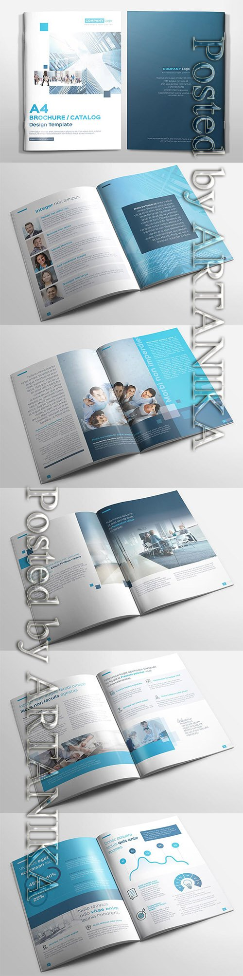 Multipurpose A4 Brochure Catalog 3609716