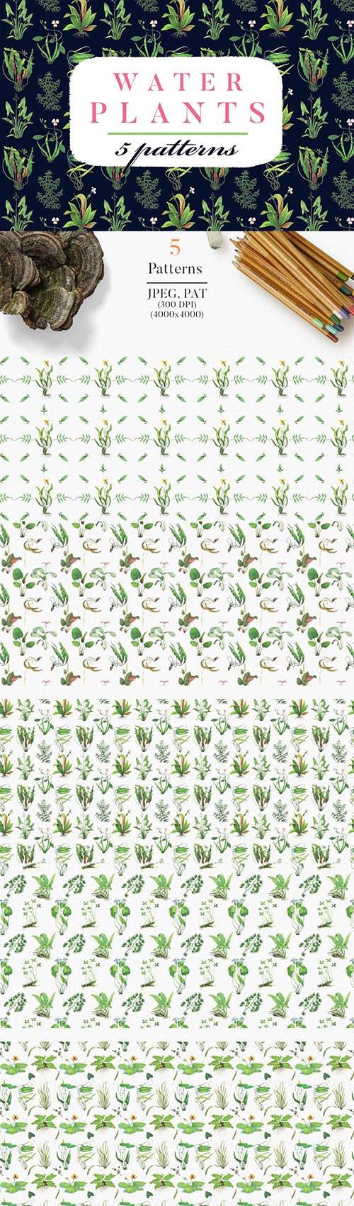 Water Plants Patterns PNG