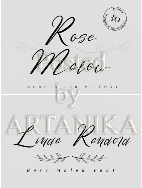 Rose Malow Script Font 3843117