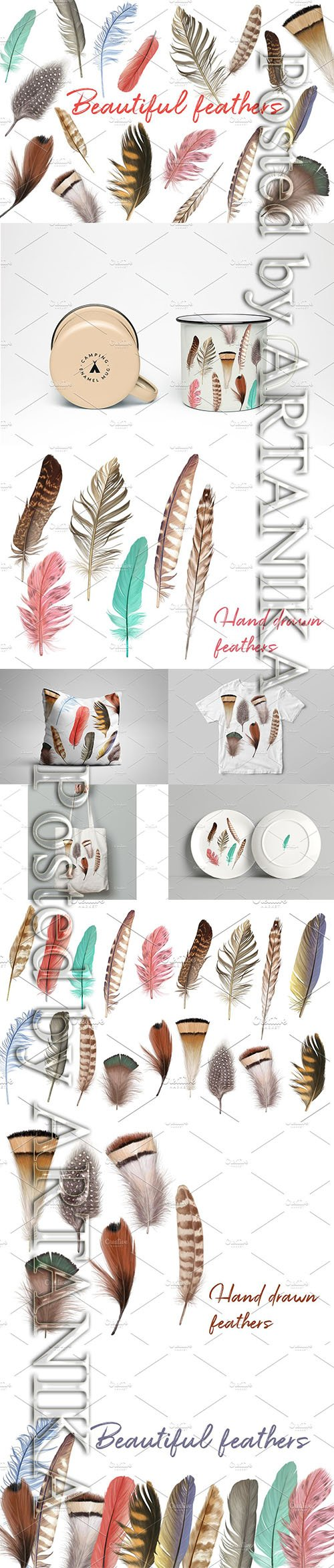 Marvelous Vector Feather Collection 2431138