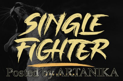 Single Fighter Font