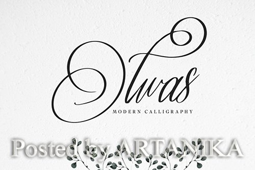 Olwas Calligraphy Font