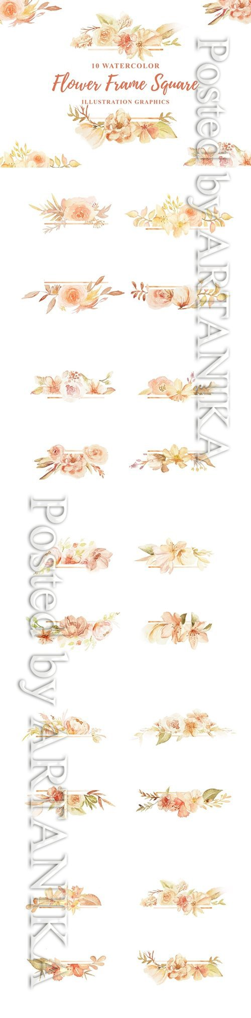 10 Watercolor Flower PNG Frame Square
