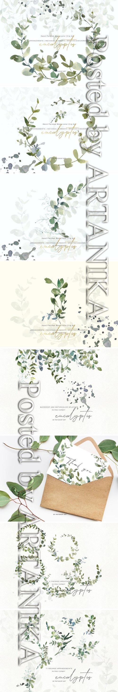 Watercolor Eucalyptus Clipart Collection 1505797