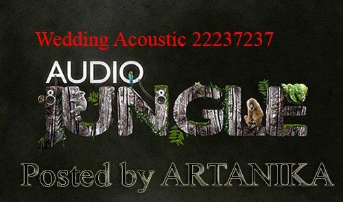 Audiojungle - Wedding Acoustic 22237237