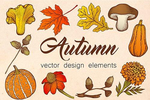 Autumn Design Vector Elements