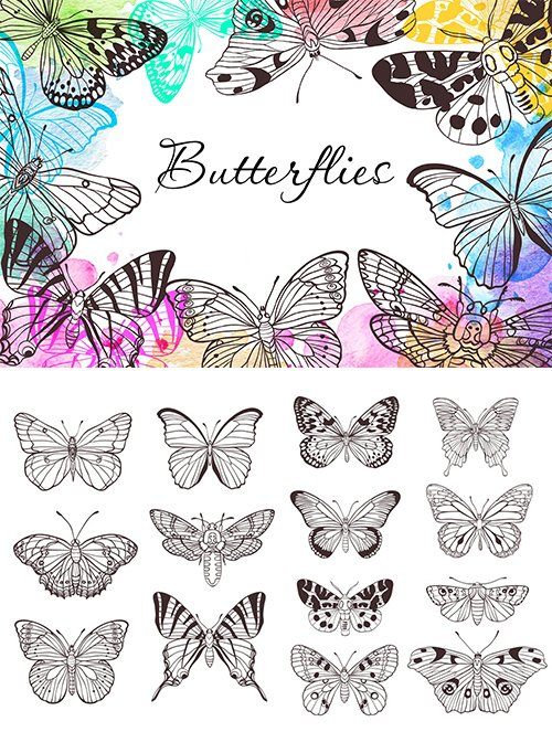 Butterflies PNG and Vector Set