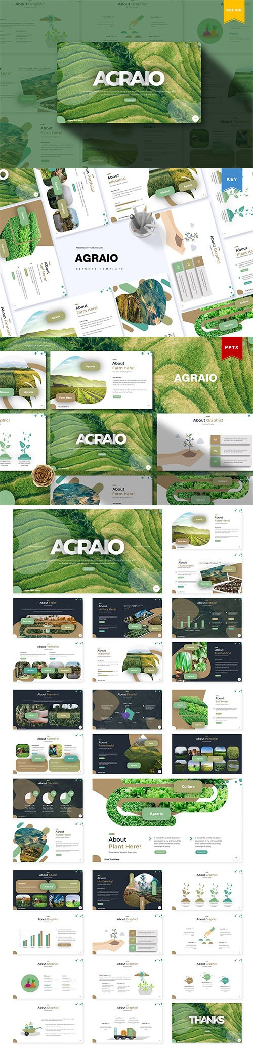 Agraio - Powerpoint, Keynote and Google Slides Templates